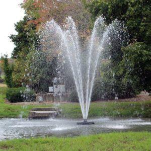 Aerating Fountain omega